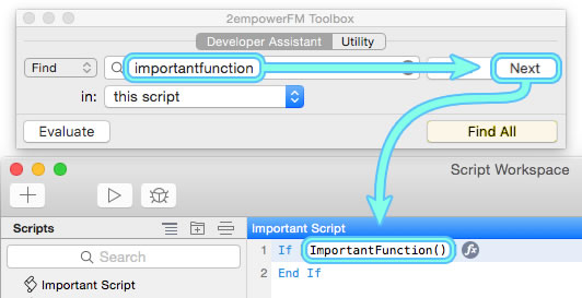 Developer Assistant finds ImportantFunction() in a script